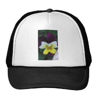 Jack and Jill Hat