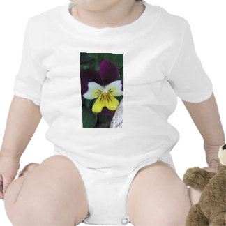 Jack and Jill Baby Bodysuits