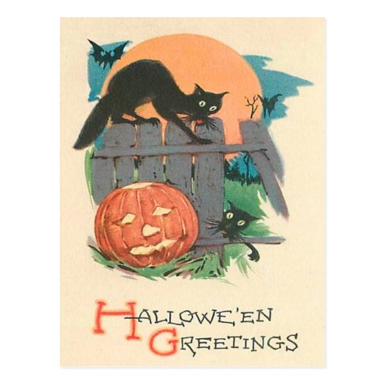 Jack O' Lantern Black Cat Bat Full Moon Postcard
