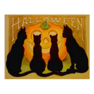 Jack O Lantern Pumpkin Black Cat Post Card