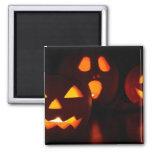 Jack-O-Lantern Pumpkins Square Magnet