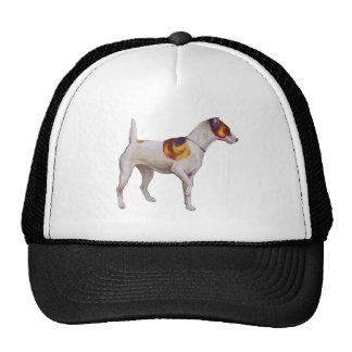 Jack Russel Hats
