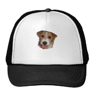 jACK RUSSELL Cap