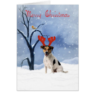 jack russell christmas card - bulldog has reindeer