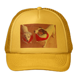 Jack Russell Christmas Hat