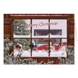 Jack Russell Christmas Wishes Greeting Card