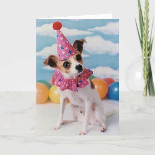Jack Russell Dog Birthday Card Zazzle