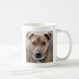 Jack Russell face Coffee Mug