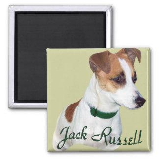 Jack Russell Portrait Magnet