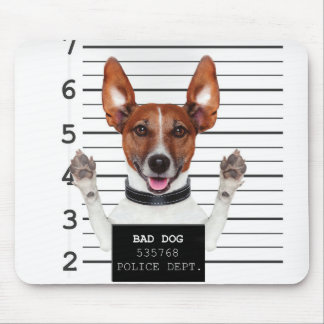 Jack russell prisoner mouse pad
