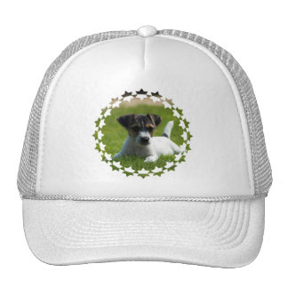 Jack Russell Puppy Baseball Hat