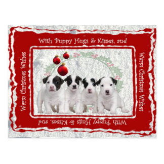 Jack Russell Puppy Hugs & Kisses Christmas Wishes Postcard