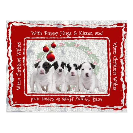 Jack Russell Puppy Hugs & Kisses Christmas Wishes