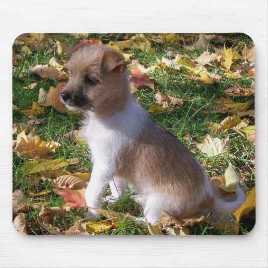 Jack Russell Puppy Mouse Mat