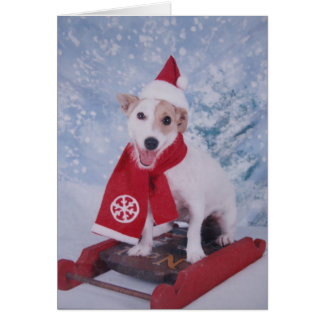 Jack Russell Santa Helper Card