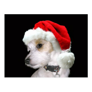 Jack Russell Santa Post Cards