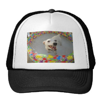 Jack Russell Terier Mesh Hats