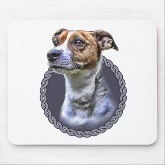 Jack Russell Terrier 001 Mouse Pad
