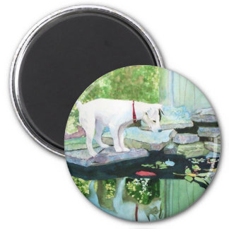 Jack Russell Terrier #1 Magnet