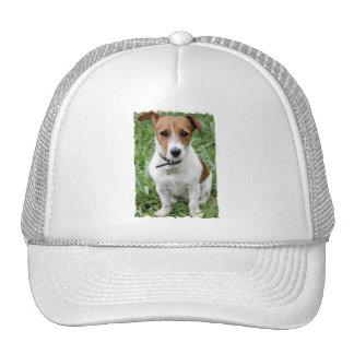 Jack Russell Terrier Baseball Hat