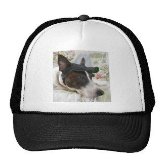 Jack Russell Terrier Cap