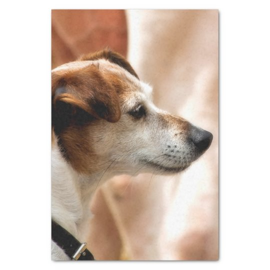 JACK RUSSELL TERRIER DOG TISSUE PAPER