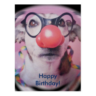 Jack Russell Birthday Cards & Invitations | Zazzle.co.uk