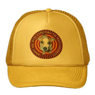 Jack Russell Terrier.Hat. Cap