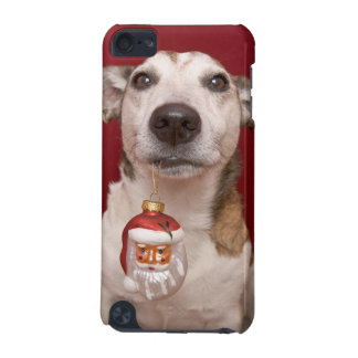 Jack Russell Terrier Holding Christmas Ornament iPod Touch (5th Generation) Covers