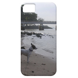 Jack Russell Terrier iPhone 5 Case-Mate ケース