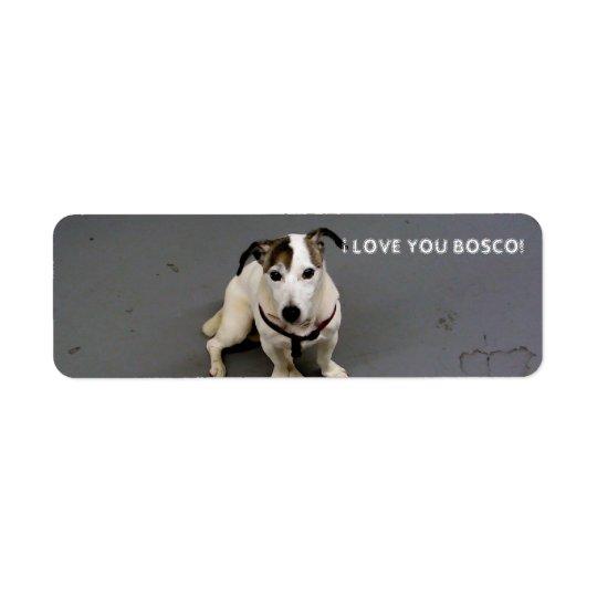jack russell terrier label return address label