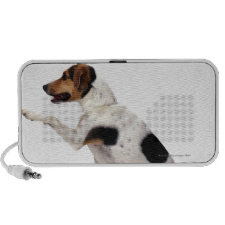 Jack Russell Terrier Lifting Paw Portable Speaker