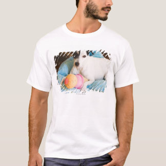 Jack russell terrier lying down T-Shirt