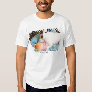 Jack russell terrier lying down t shirts