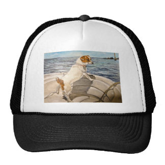 Jack Russell Terrier on boat Hats