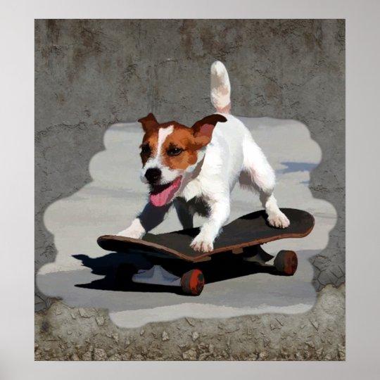 Jack Russell Terrier on Skateboard Poster