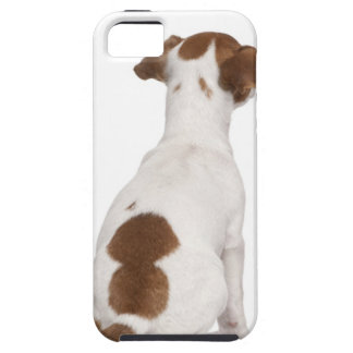 Jack Russell Terrier puppy (3 months old) Tough iPhone 5 Case