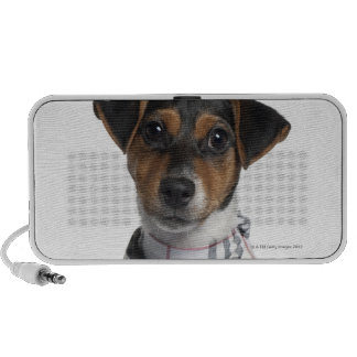 Jack Russell Terrier puppy (4 months old) Portable Speakers