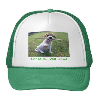 Jack Russell Terrier Puppy Cap