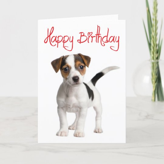 Jack Russell Terrier Puppy Dog Birthday Card Zazzle