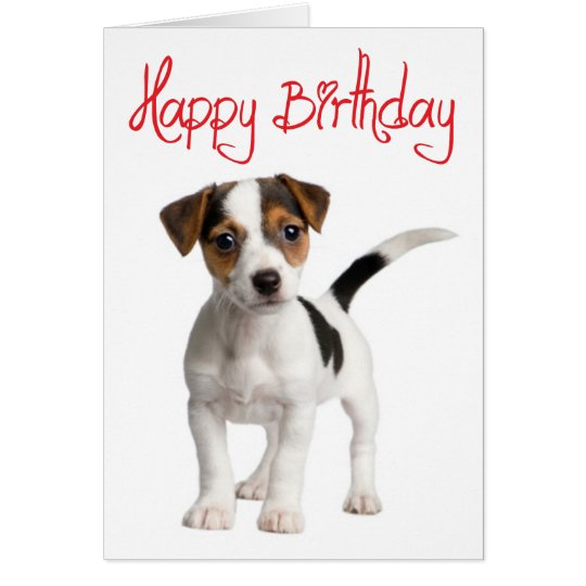 Jack Russell Terrier Puppy Dog Birthday Card