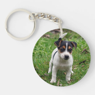Jack Russell Terrier Puppy on Grass AcrylicKeyring Double-Sided Round Acrylic Key Ring