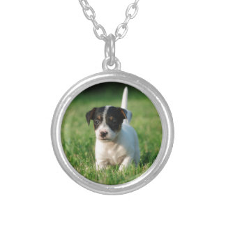 Jack Russell Terrier puppy Silver Plated Necklace