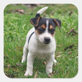Jack Russell Terrier Puppy Sticker Sheet