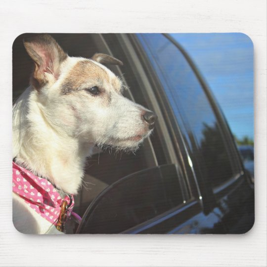 Jack Russell Terrier Ride to the Beach Mousepad