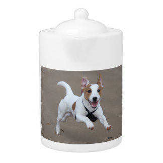 Jack_Russell terrier running 2.png