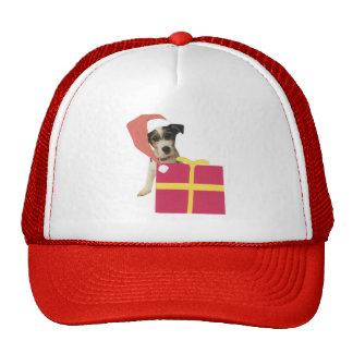 Jack Russell Terrier Santa Hat