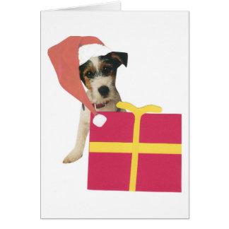 Jack Russell Terrier Santa Hat Card