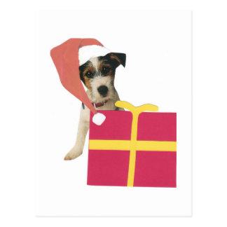 Jack Russell Terrier Santa Hat Postcard