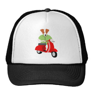 Jack Russell Terrier Scooter Cap